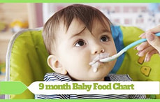 9 month Baby Food Chart