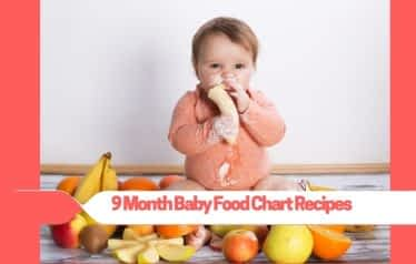 9 Month Baby Food Chart Recipes