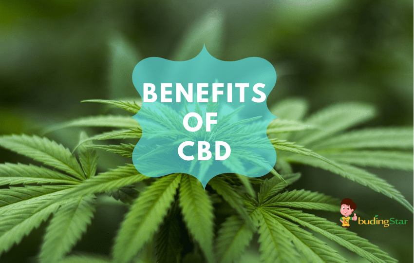 Medical benefits of CBD